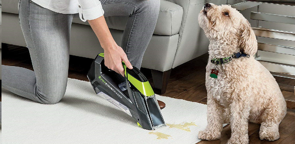 Best Carpet Cleaners for Area Rugs