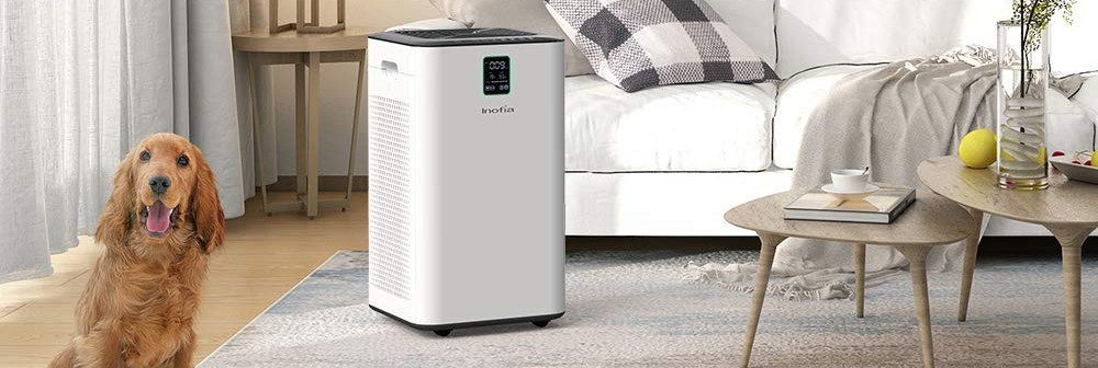 Elechomes UC3101 vs. Inofia Air Purifier