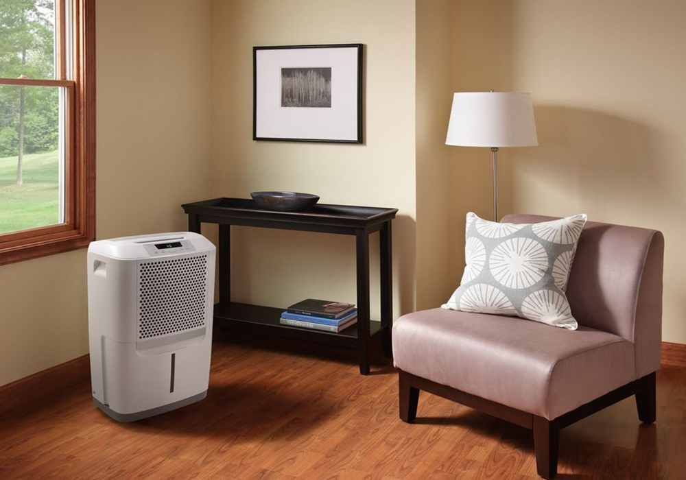 Dehumidifiers for Mold