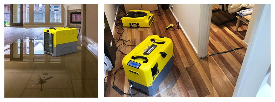 Crawl Space Dehumidifiers