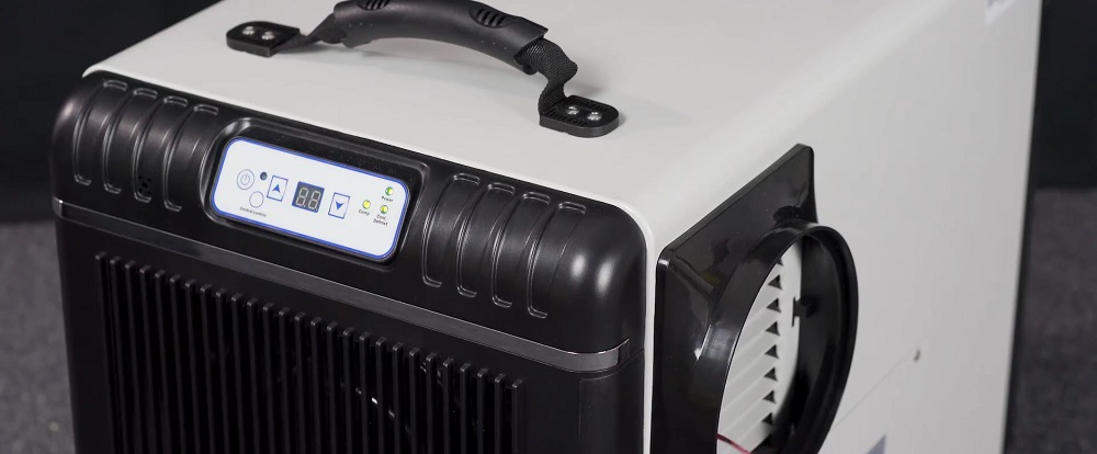 Best Dehumidifiers for a Crawl Space